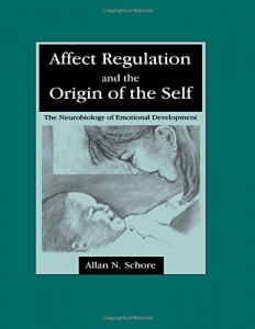 Affect-Regulation-and-the-Origin-of-the-Self-The-Neurobiology-of-Emotional-Development-0