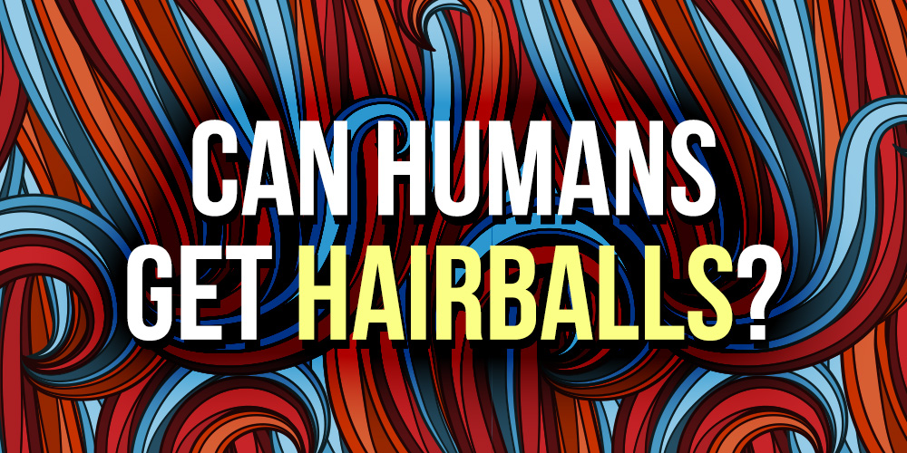 can-humans-get-hairballs-dr-drew