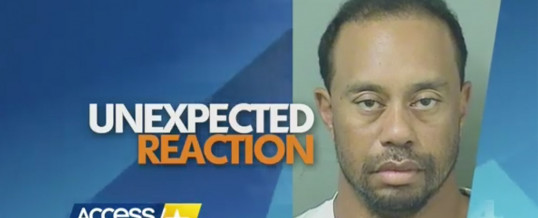 Tiger Woods' DUI Arrest: Dr. Drew Discusses