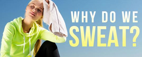 Diaphoresis…Hidrosis…Sudor: 'Tis the season to be sweaty!