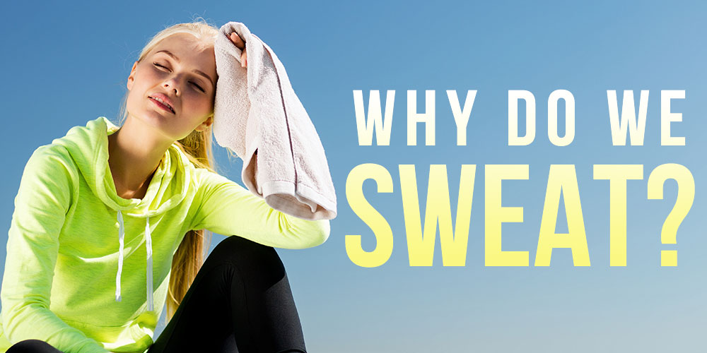 why-do-we-sweat-dr-drew