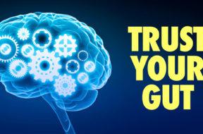 dr-drew-trust-your-gut-article-thumbnail