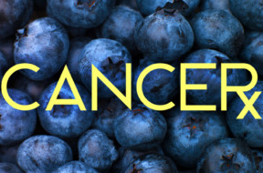 blueberries-cancer-treatment-radiation-dr-drew-2018