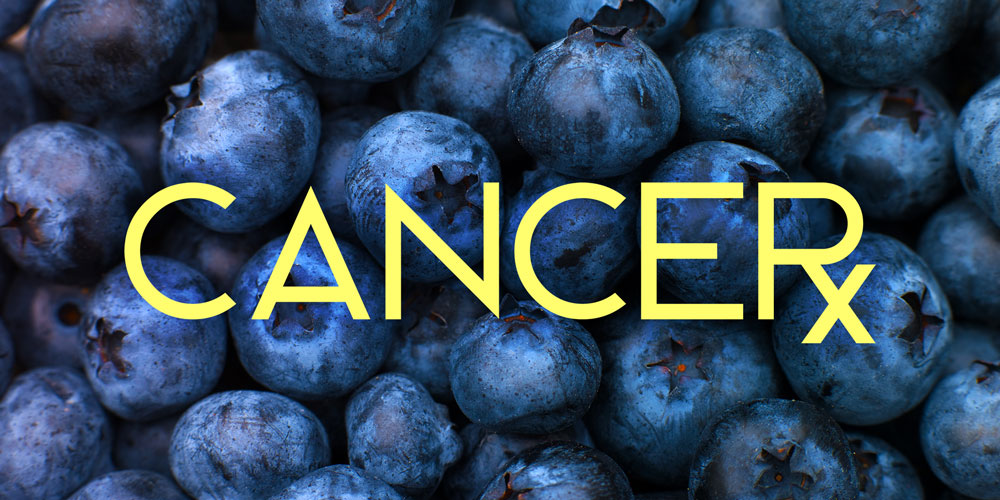 CANCERx: Can Blueberries Make Radiation More Effective in Cervical Cancer Patients?