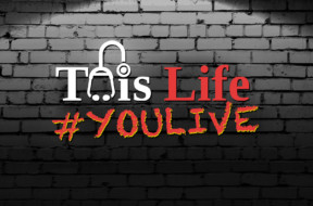 dr drew live – INTRO LOGO – this life you live on brick wall