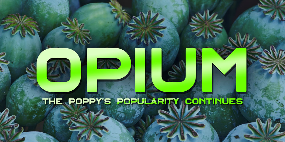 The Poppy's Popularity Continues [History Of Opium: Part 2]
