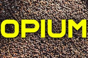 opium-2018-1