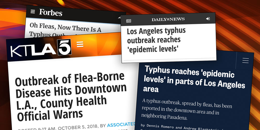 Dr. Drew Predicts Typhus Outbreak: Understanding The Symptoms, Treatment, And Why It's Hitting Los Angeles